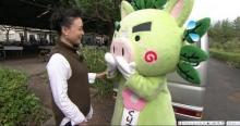 テレビ大阪「行ってしまOH!鹿児島」さんに出演させて頂きました
